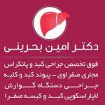 دکتر امین بحرینی اصفهان